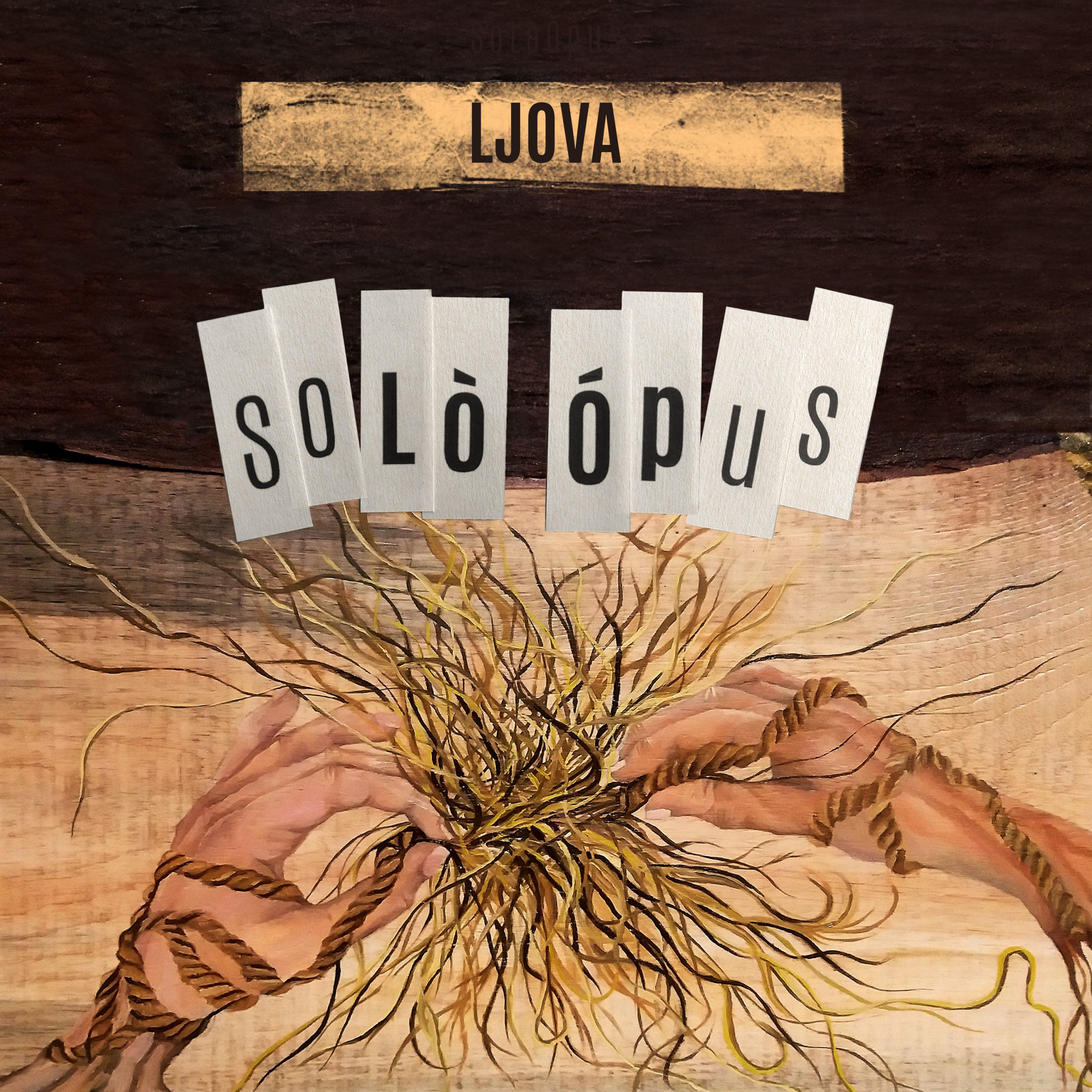 Ljova's tenth album - Solo Opus
